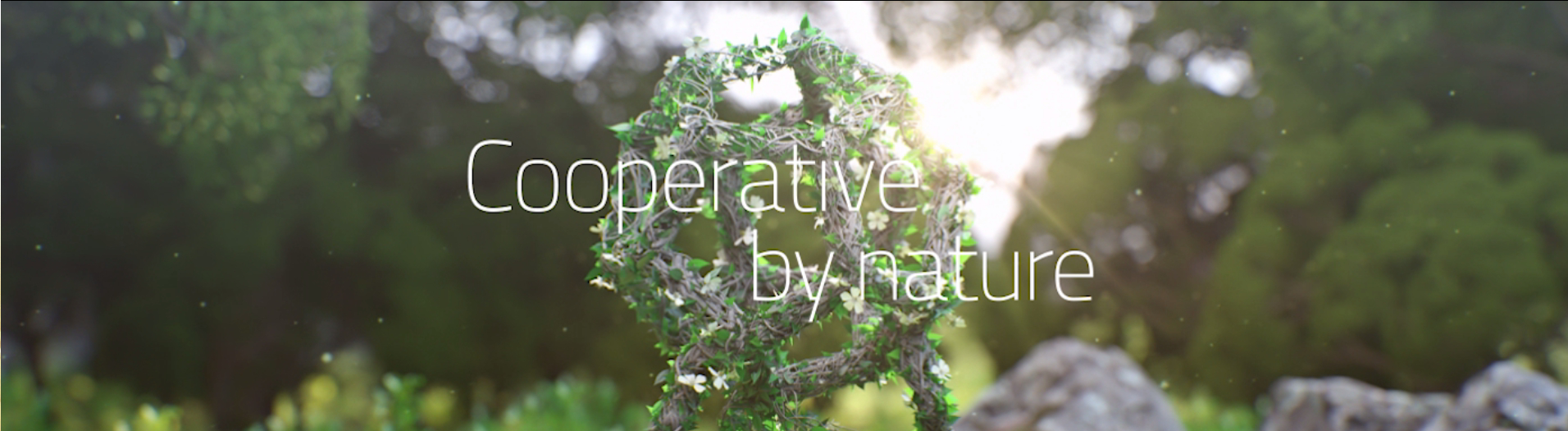 Cooperative by nature_Movie